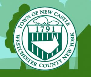 my_new_castle_logo
