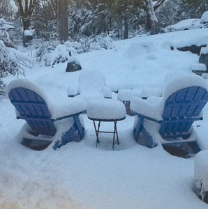 The Wong family front yard was blanketed with Sandy's October snow.