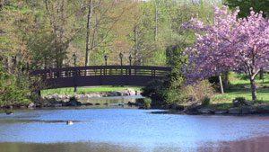 Wampus Brook Park in Spring