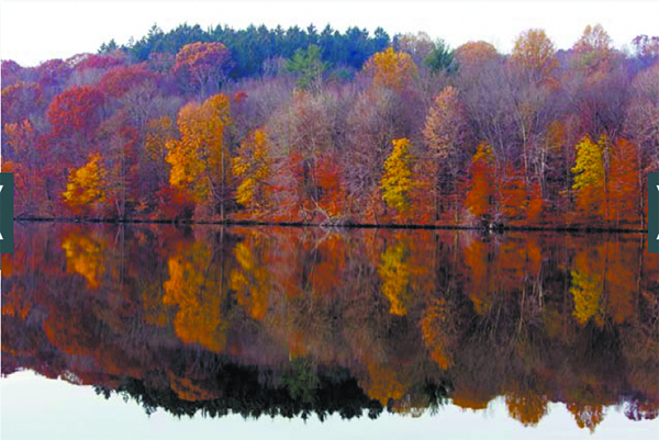 fall parks page pic