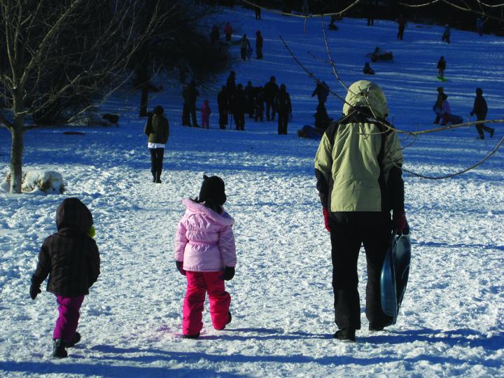 sledding at gedney pic