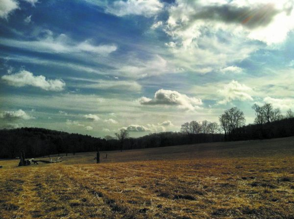 November sky. Ward Pound Ridge Reservation, Cross River.