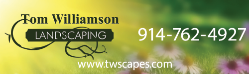 Tom Williamson Landscaping
