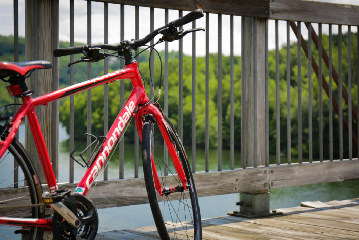 The Right Path: Best Bike Trails Nearby