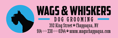 Wags & Whiskers Dog Grooming