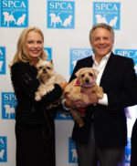 Furry Friends and SPCA Supporters Step Out in Style for Top Hat & Cocktails Annual Gala