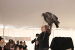 Eagles to Return to Hudson Valley for 14th Annual EagleFest Celebration