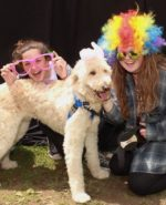 Support the 2018 SPCA Dog Walk and Pet Fair